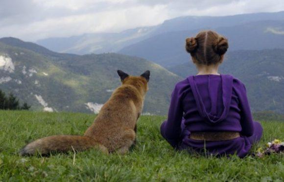 A róka és a gyerek, filmjelenet