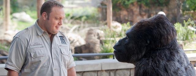 Kevin James - gorilla