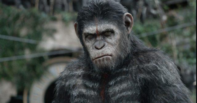 A majmok bolygója – Forradalom-01