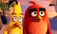 AngryBirds_jelenetfoto (2)
