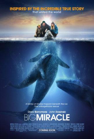 Mindenki szereti a bálnákat, film plakát