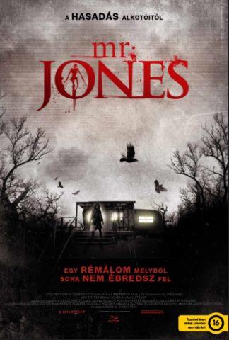 Mr. Jones (2013) poszter